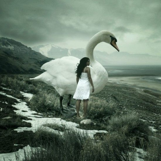 beautiful -- anja stiegler dream photography