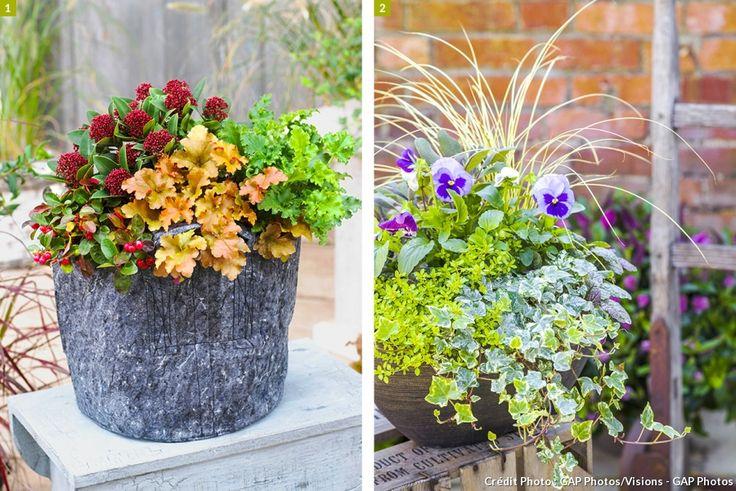 52 best images about jardini res et pots de fleurs on pinterest delphiniums planters and. Black Bedroom Furniture Sets. Home Design Ideas