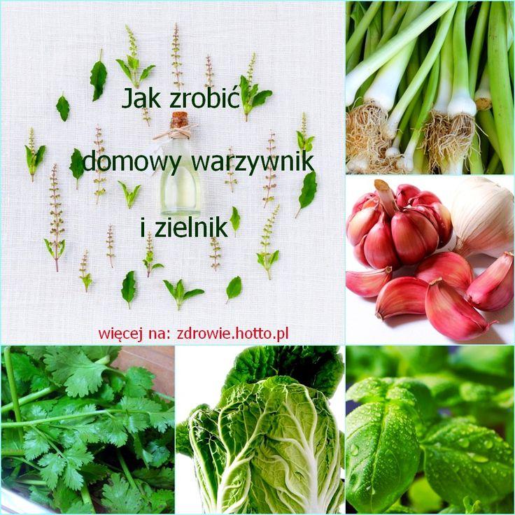 Domowe Ogrody Warzywne – zasadź te rośliny 1 raz i korzystaj z nich zawsze