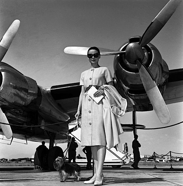 Audrey traveling in style with canine companion