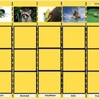 Animal Category Sorting Board for Autism *Have the students sort a collection of 2x2 animal pictures that you choose into five animal categories: 1...