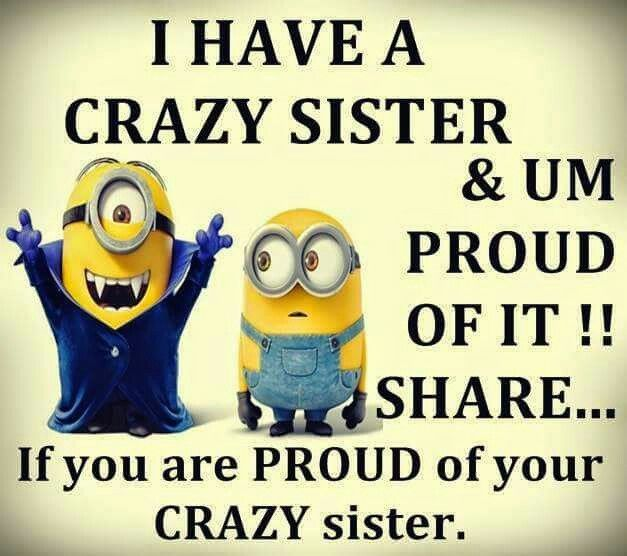 Funny Sister Quotes Images: 17 Best Images About Meme On Pinterest