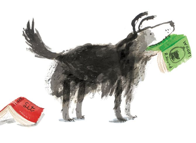 Time for Bed, Fred! - Yasmeen Ismail's book for tots is all about a naughty dog who won't go to bed. We all know one of those...