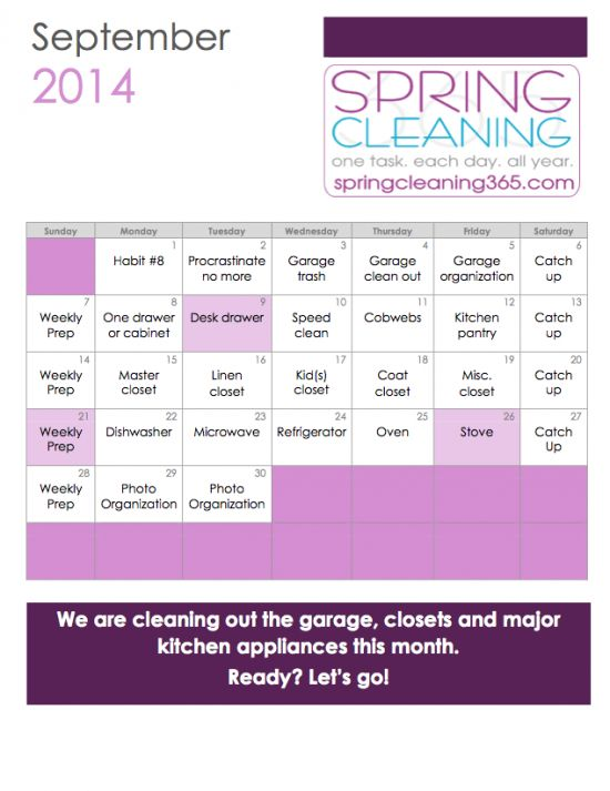 Spring Cleaning 365: I need this, daily and monthly calendars.