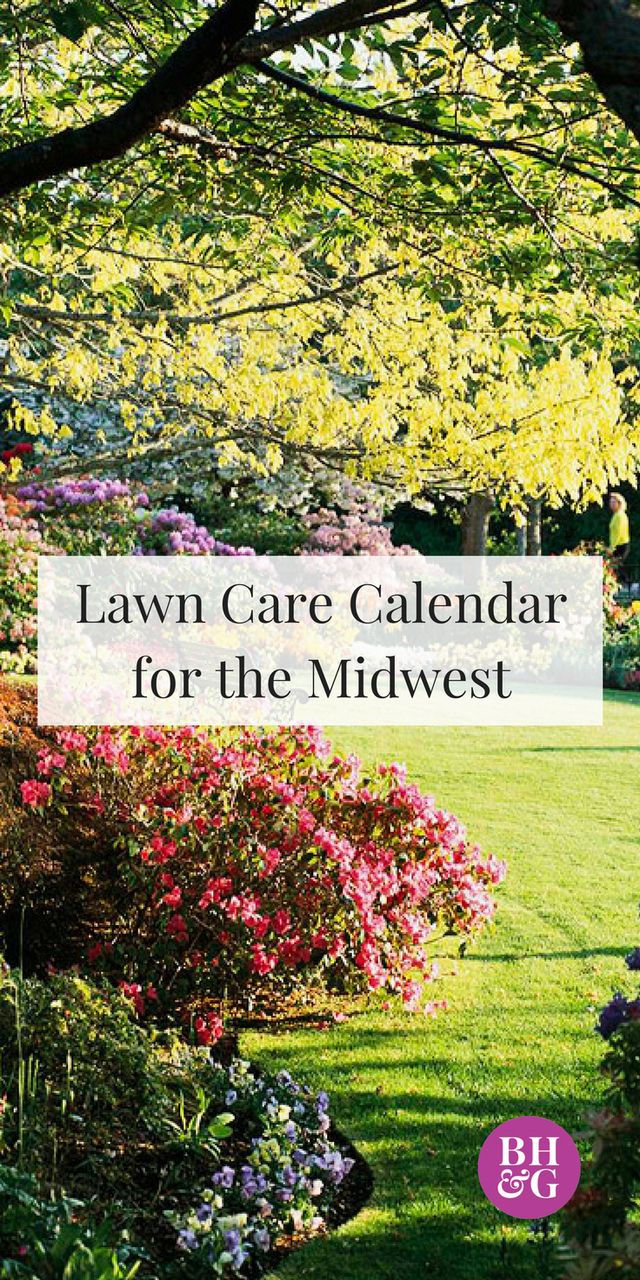 This season-by-season lawn care guide for the Midwest will help you make the most of your lawn throughout the year.