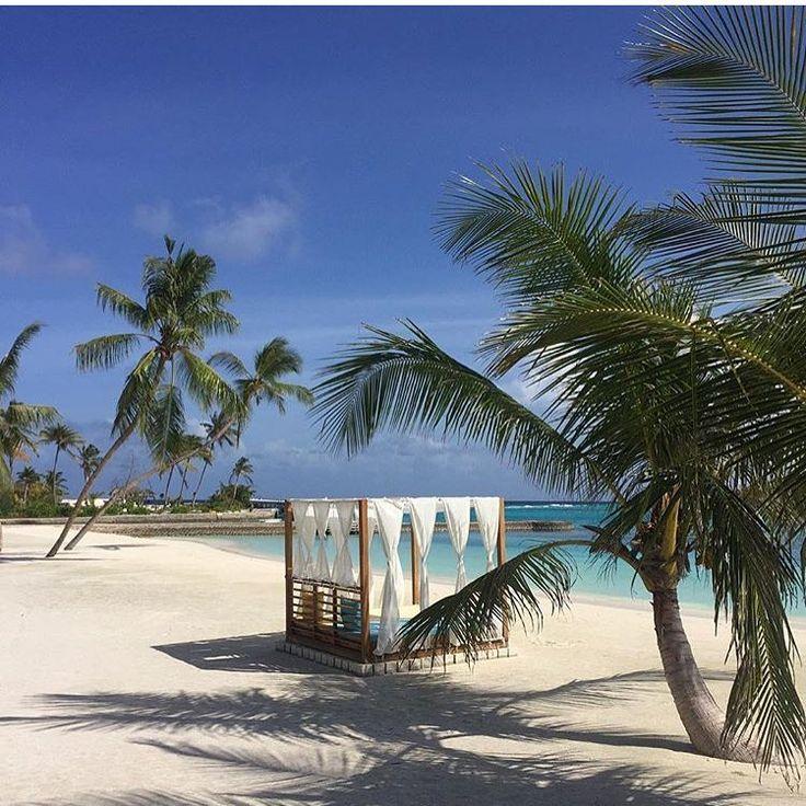 """985 gilla-markeringar, 7 kommentarer - DANIELLA DANSSON (@nyahemmet) på Instagram: """"Januari kommer inte bli helt fel ändå! ✈️🙌🏼 @atmoskani #maldiverna #nyahemmettravels"""""""