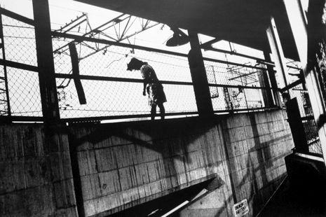 Daido Moriyama: Photo Books While You Wait - The New Yorker