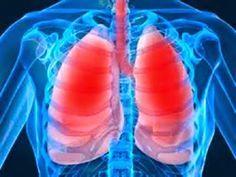 Cura pela Natureza.com.br: Xarope que limpa aparelho respiratório e combate gripe, rinite e sinusite