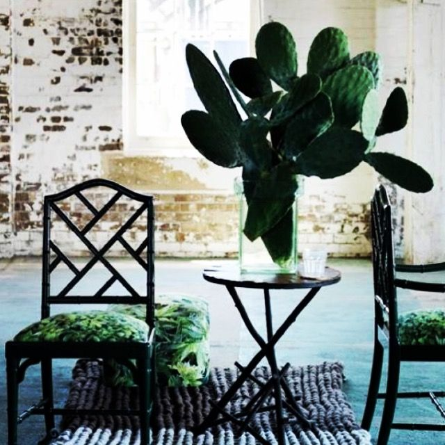 Inspiration from exotic & tropical elements for events, weddings, parties and home decor.   #cactus #exotic #tropical #events #travel #wanderlust  My EVENTful Adventures