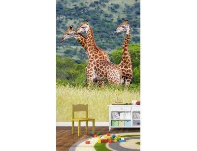 """""""Giraffes"""". A wallpaper mural from Muralunique.com.  https://www.muralunique.com/giraffes-6-x-8-183m-x-244m.html"""