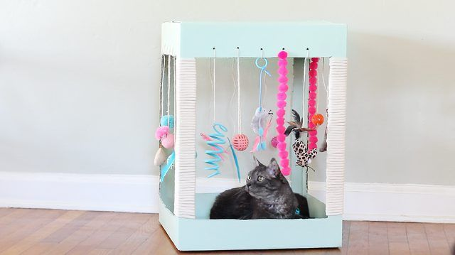 Kitties love to play with boxes, yes? But a box tricked out with all of their favorite toys AND a scratching post AND cat treats?