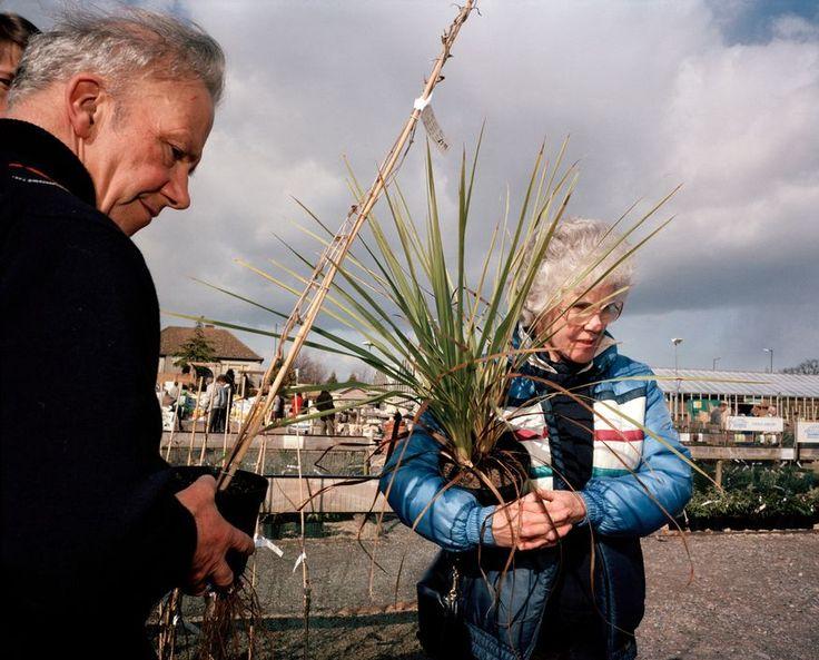 Martin Parr - England. Bristol. Burrington Combe Garden Centre. 1987