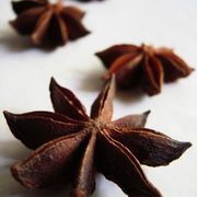 How to Make Homemade Anise Extract | gonna try homemade licorice! One tsp anise to 4 ounces vodka. Easy enough!