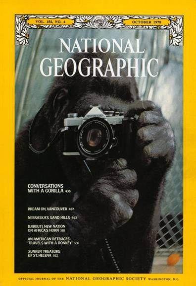 NG great cover