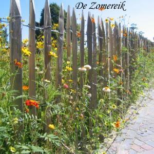 kastanjehouten hekwerk met wilde bloemen