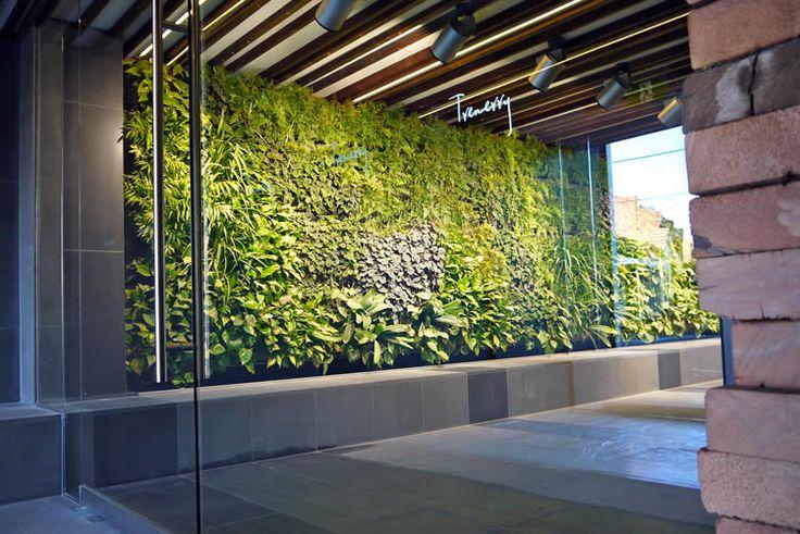 Internal green wall, Melbourne