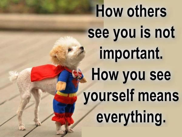 So adorable!Thoughts, Words Of Wisdom, Life Quotes, Self Image, Dogs, Superman, Life Lessons, Quotes Life, Inspiration Quotes