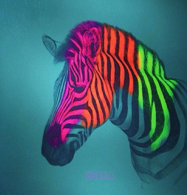 #neon #zebra wish there were more neon