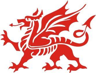 Welsh Dragon Vinyl Sticker