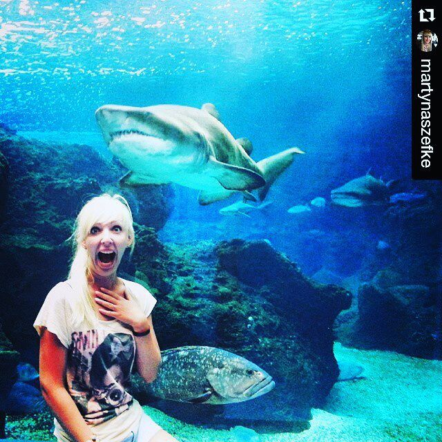 #Repost @martynaszefke with @repostapp ・・・ Pan rekin :D #shark #cretaquarium #Greece #bluewater #fish #polishgirl #blonde #holidays #funny @Cretaquarium @Crete @CreteRegion @myhersonissos #Greeksummer @VisitGreecegr @DiscoverGRcom #lovingreece #lp #menoumellada #creteaquarium @visitgreecegr @heraklion_info_point @myhersonissos  #lovingreece #aquarium#sea #marine #underwater #marinelife #research