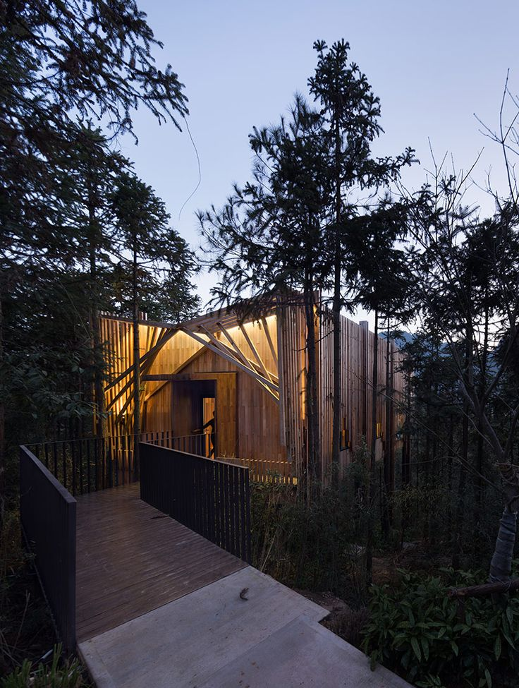 Tree House Designed by IanD Studio