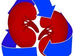 La Donación De Órganos Gana Terreno En República Dominicana