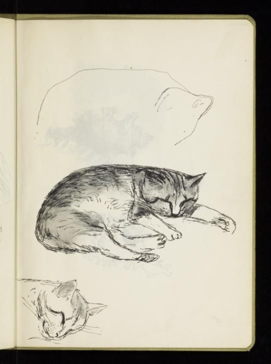 James Boswell, James Boswell 'Studies of a sleeping cat', 1953 © The Estate of James Boswell