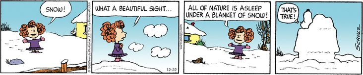 December 22, 2012 - all nature is asleep under a blanket of snow