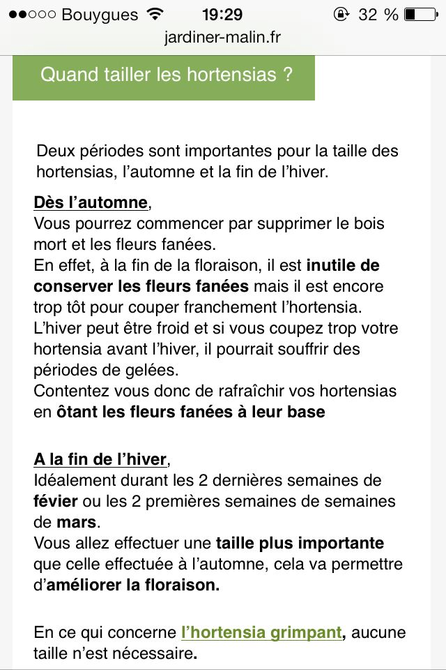 1000+ ideas about tailler les hortensias on pinterest