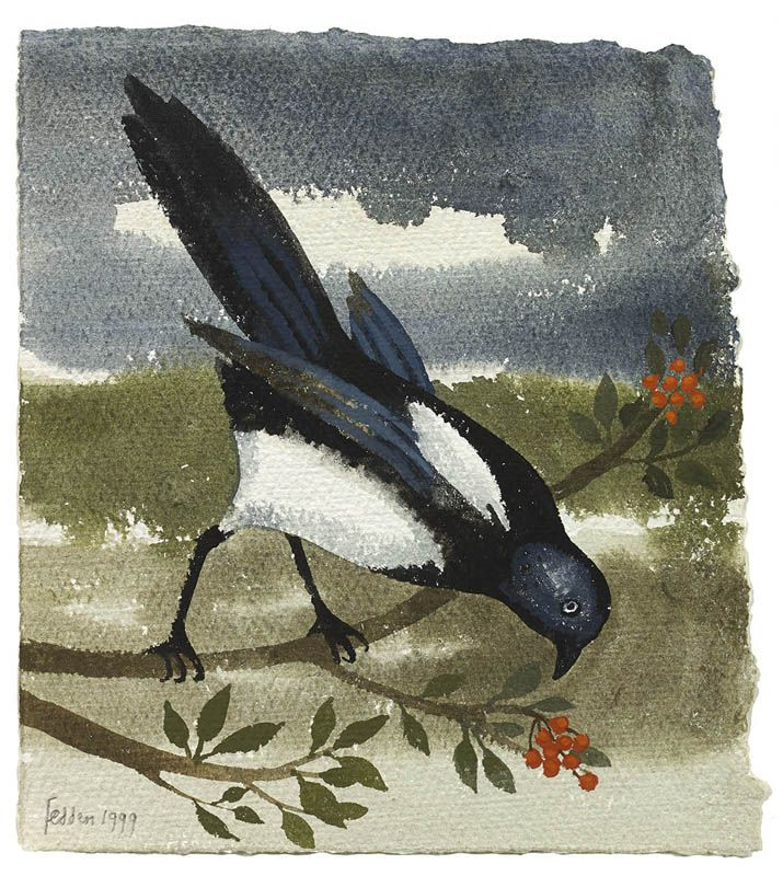 Mary Fedden | Magpie