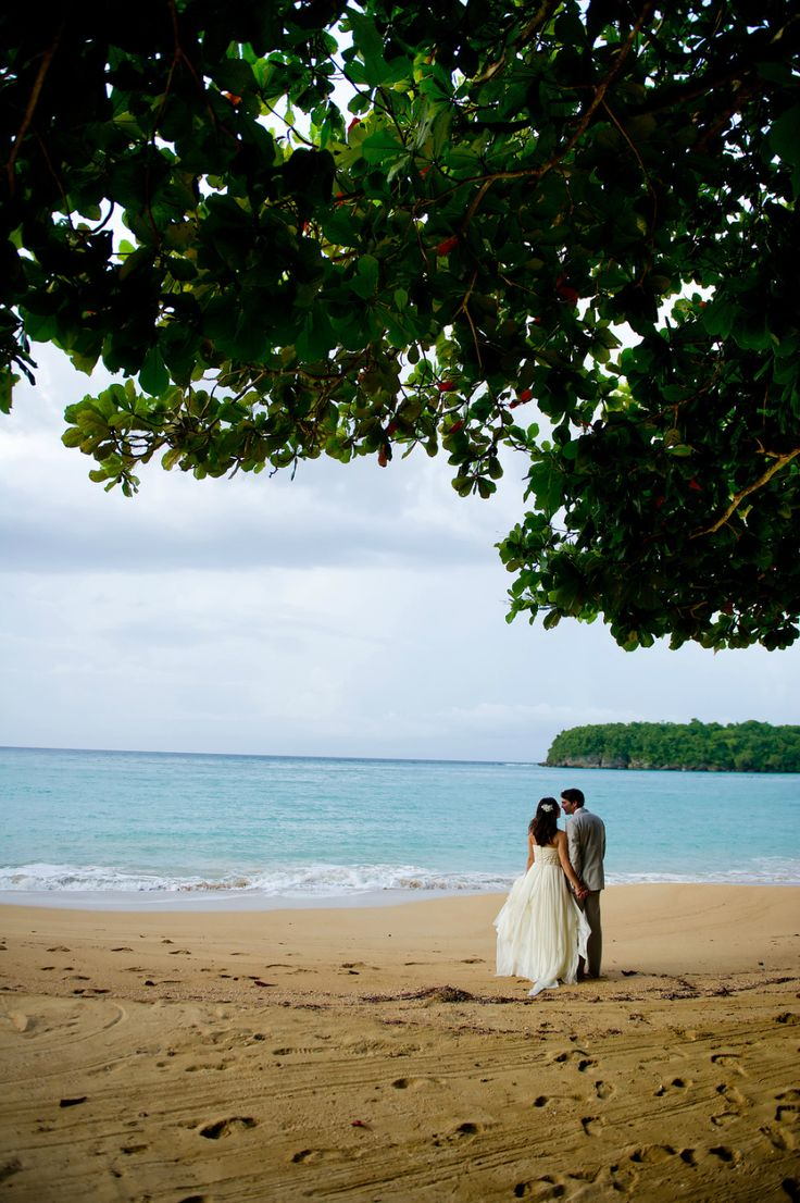 43 Best Images About Elope In Jamaica On Pinterest
