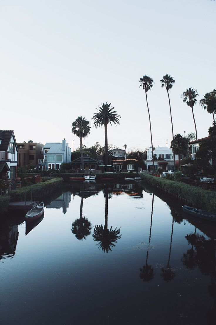 http://roaminglovers.fr/los-angeles/ #roaminglovers #venicebeach #losangeles #palmtrees #venice #la