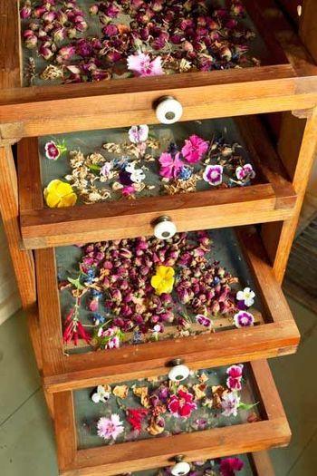 小さい葉や茎の状態のものや、花の部分のみ乾燥させる場合は、葉や花が重ならないようにざるやネットなどに並べ、乾燥させます。
