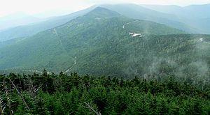 De montaña: De Norteamérica ubicada al este. Desde Terranova y Labrador en Canadá hasta Alabama, en los Estados Unidos