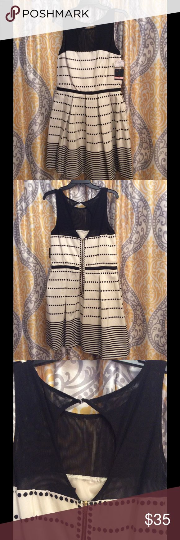 Black and WHITe dress fancy knee length pockets Going out dress knee length side just taylor Dresses Midi