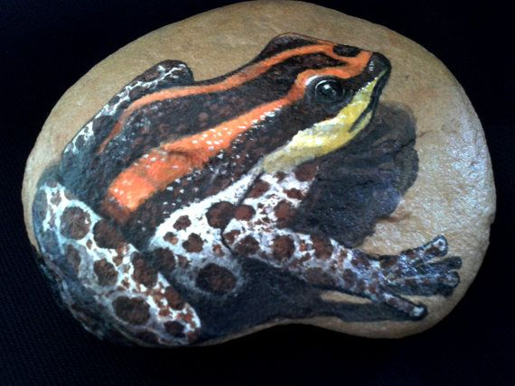 Garden stone/ Painted Rock/ Christmas gift/ Frog Art / Paper Weight/ Home Decor/ Custom Pet Portraits on Etsy