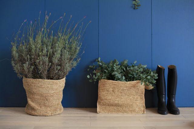 green in soft basket