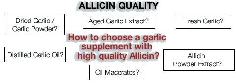 Garlic supplement (garlic pills, garlic capsules) | AllicinFacts