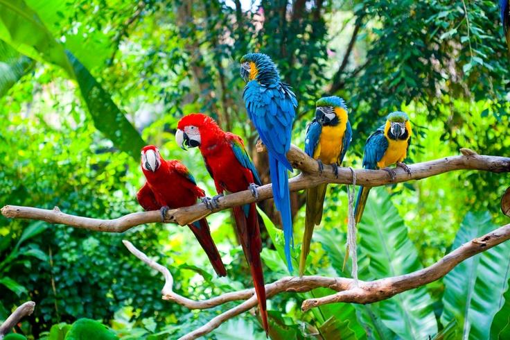 like a gang #travel #SouthAmerica
