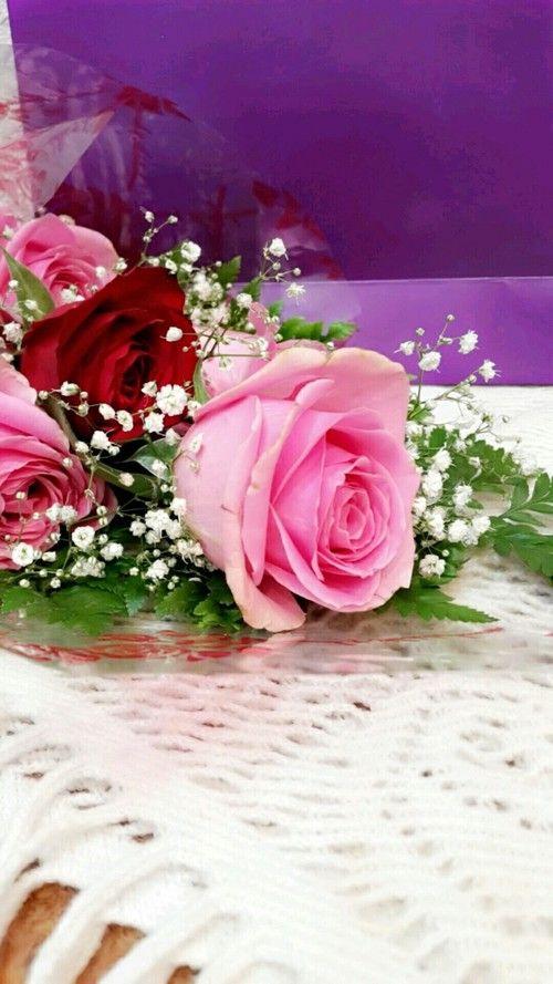 أجمل صور ورد رومانسي صور ورود حب رومانسية Flower Pictures Romantic Flowers Flowers