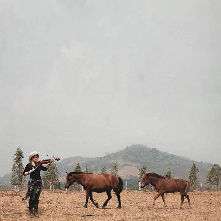 """""""SPECTACULAR!!! (@hasan_fagundez) He said: """" The beauty of horse music  """".    by: @hasan_fagundez   Location: Kawasan Agro Wisata, Taman Labirin, Kec.…"""""""
