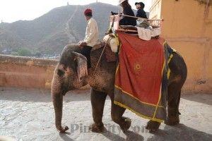 10 fun things to do in jaipur