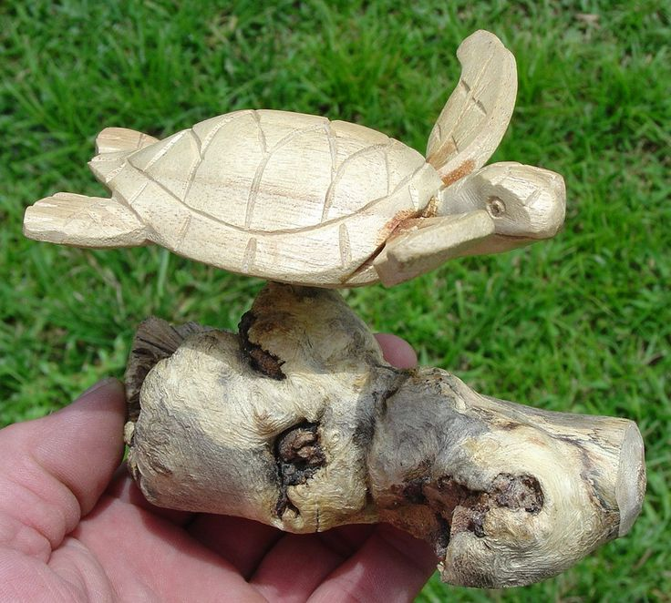 Hand Carved Wooden Sea Turtle Sculpture On Parasite Wood