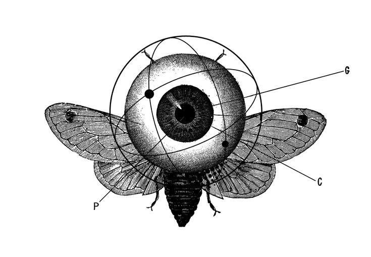 Le illustrazioni di età vittoriana e i simboli alchemici hanno sempre attirato la mia attenzione, perché li vedo entrambi immersi in un alone di mistero, intrisi di messaggi criptati, e questo