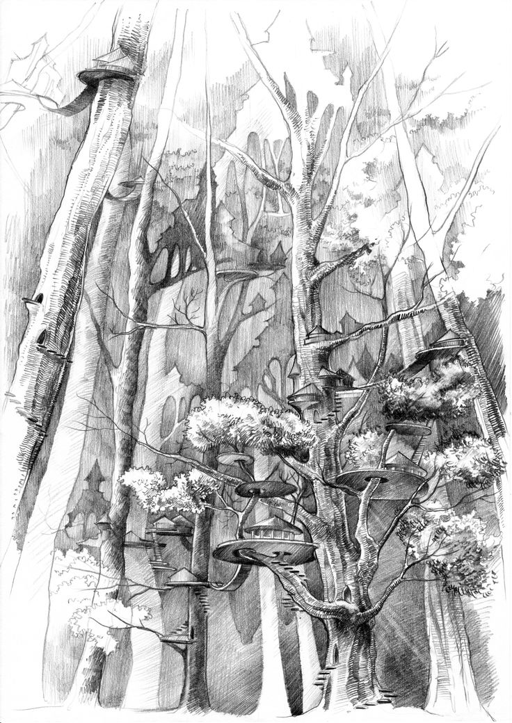 #pencil #drawing by #malinowska #minkulul of Ferrun, an #elf #elven forrest - All names and locations belongs to Cheshy-nyan