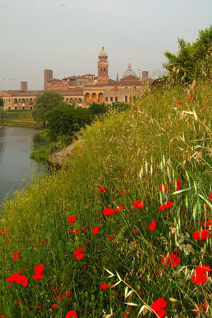 We visit Mantua on our classic Italy cruise. For more info see: http://www.gobarging.com/cruises-in-italy