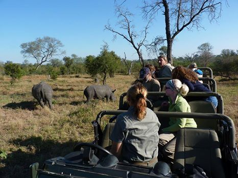 Still a sight that thrills our guests, especially in view of the circumstances surrounding the preservation of these magnificent creatures.