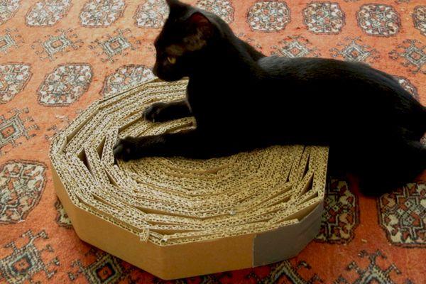 Veja aqui como fazer um arranhador de papelão para o seu gato. É fácil, barato, vai preservar seus móveis e o seu gatinho vai simplesmente amar!