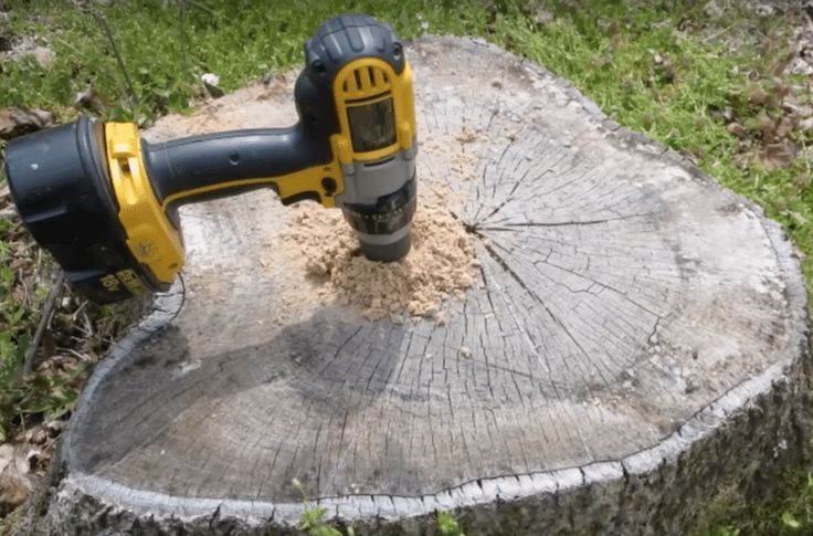 How to easily remove a tree stump for a bargain tree