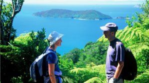 Enjoy the stunning scenery while walking the Queen Charlotte Track